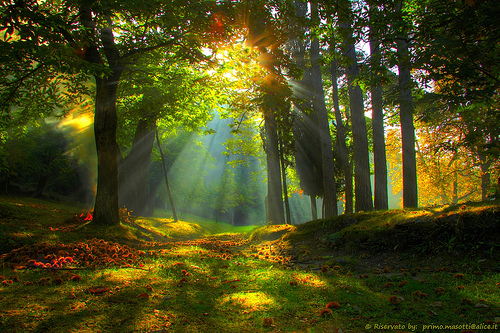 The Glory of Spirit Kingdom Living – By Ron McGatlin
