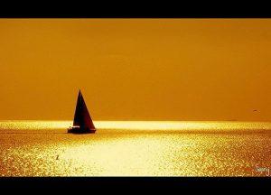 1n-golden-sea