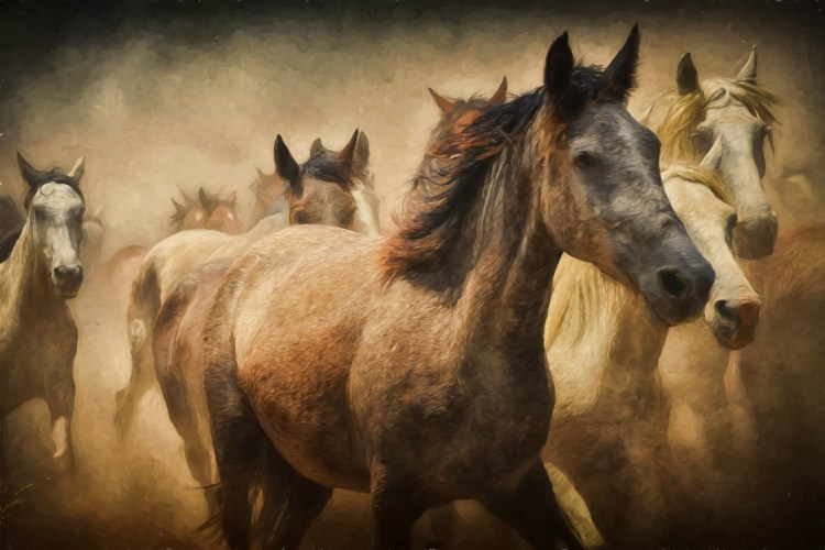 The Strength of Unbridled LOVE Is Unstoppable By Ron McGatlin